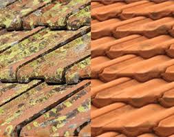 anti mousse murs exterieurs anti mousse extérieur toiture terrasse 5l 50m2 décapants