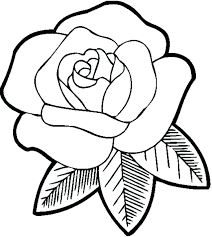 Printable Rose Coloring Pages For Adults Compass Print Free Flowers Flower Download Full Size