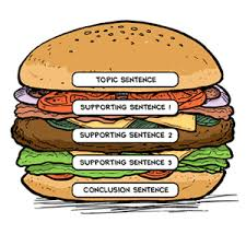 The Paragraph Hamburger Is A Writing Organizer That Visually Outlines Key Components Of Topic Sentence Detail Sentences And Closing