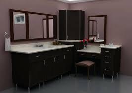 Ikea Canada Bathroom Mirror Cabinet by Bathroom Vanity Ikea Canada U2013 Luannoe Me