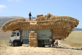 Large Bales Of Hay On Truck Image - Free Stock Photo - Public Domain ... Hay Truck Stock Photos Images Alamy My 63 Chevy Hauling Hay Trucks Hay Hauler Loading Time Lapse Youtube Gmc Diesel Dairyland Co 24 Truck And Trailer In Flickr Australian Trucking On Twitter The Volvotrucks Ata Safety 5jp Ranch Life Page 6 Delivering To Market At Tenerir The Atlas Mountains Pinterest Overloaded In West Coast Of Turkey Image Farm With Family Help Men Riding Full