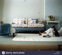blumen und blaue sofa in graues modernes wohnzimmer mit