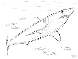 Great White Shark Coloring Page Shortfin Mako Free Printable Pages Download