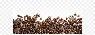 Coffee Bean Iced