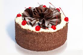 Traditional German torte of chocolate sponge Kirsch scented layered with chocolate fresh cream and