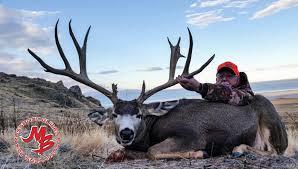 utah s top 10 monster mule deer of 2014 outfitters edition
