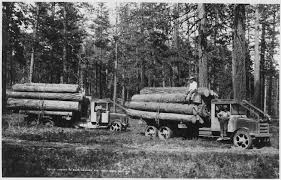 File:Ladd Photo Of Solid-tired Moreland Logging Trucks Of Biles ...