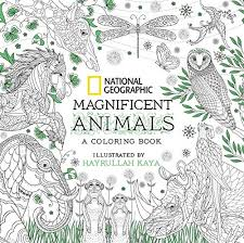National Geographic Magnificent Animals A Coloring Book