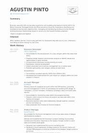 Point 2013 Resume Sample Best Developer