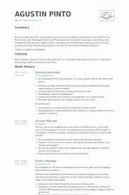 Point 2013 Resume Sample Best Developer