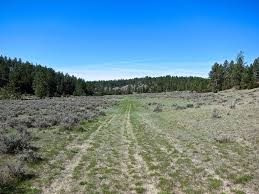 100 Stock Farm Montana Greater Yellowstone Ranch Live Water Properties
