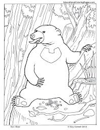 Mammals Book Three Animal Coloring Pages For Kids