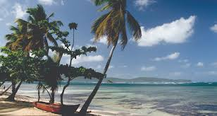 Florida Tile Grandeur Nature by Luxury Cruise From Bridgetown To Fort Lauderdale Florida 06 Dec