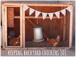 Keeping Backyard Chickens 101   Urban Chickens   Pinterest ... Backyard Chickens 101 The Moms Guide To San Diego Amazoncom Complete Beginners Lauren Diamant Are Hard Workers In Our Bnyard Every Animal We Raise Renew Pinterest Flock Has A Complex Social Hierarchy With Singular Leader Raising For Dummies Modern Farmer Sister Chicks Club House Backyard Home Cluck Central Cedar Falls Iowa Public Radio 2015 Fact Sheet Chicken Egg 141 Best Images On
