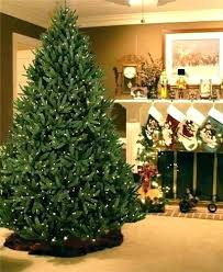 8 Ft Slim Artificial Tree Trees Collection For Page 2 Lit Pictures Christmas 8ft Flocked