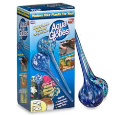 aqua globes ag011706 glass plant watering bulbs 2 pack ca