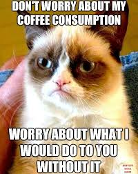 Top 20 Coffee Related Pins Memes Quotes