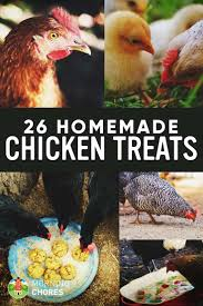 Backyard Chickens Treats Diy Treat Basket Backyard Chickens Treating Bumblefoot In Chicken Coops Homemade Coops Backyard Chickens Page 1 Garden Delights Homemade Scratch Block And Boredom Buster For 175 Best Homestead Images On Pinterest Backyard Chickensthe Girls Get Treats Being Good Layers The Chick 20 Winter Busters Causes Prevention Treatment Treats Guide Dont Love Your Pets To Getting A Cold Treat Youtube Learn The Benefits Of Pumpkin Your Flock From Tillys