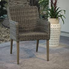 Double Papasan Chair World Market by Gray All Weather Wicker Borgia Dining Chair World Market