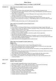 Download Treasury Management Sales Resume Sample As Image File