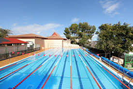 Olympic Swimming Pool Top View Inspiration 2701 Pools