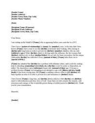 Writing Plea Leniency Letter Judge