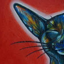 Crazy Cat By Prax Rao