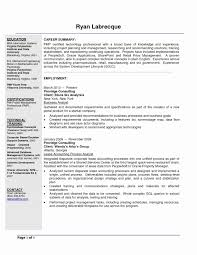 Business Analyst Sample S For Project Managers Elegant Resume