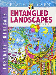 Creative Haven Insanely Intricate Entangled Landscapes Coloring Book Adult