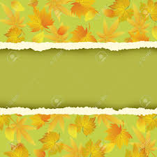 Beautiful Green Autumn Background With Colorful Leaves Pattern Wallpaper Yellow Orange Red