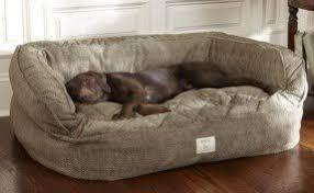 Designer Dog Beds For Dogs Foter