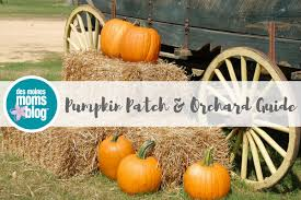Nearest Pumpkin Patch Shop by Des Moines Pumpkin Patch And Orchard Guide Fall 2017