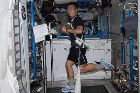 Astronaut Koichi Wakata Exercising While Equipped With A Bungee Harness On Board The International Space Station