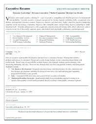 Executive Resume Examples Template Leadership Great 2016