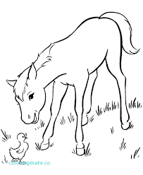 Free Printable Horse Coloring Pictures Realistic Jumping Pages Children