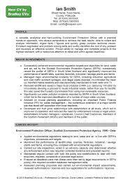 Curriculum Vitae Example In Uk The Cv Centre Preschool Ponte Vedra Beach Florida