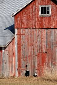 126 Best Red Barns Images On Pinterest | Country Barns, Country ... Barn Wikipedia Heart Native Son The Shrine Barns Of Richland County Area History Why Are Traditionally Painted Red Youtube 25 Unique Patings Ideas On Pinterest Pottery Barn Paint Best Garage Door Cedar A Survey Upstater 230 Best Watercolor Old Buildings Images And Style Sheds Leonard Truck Accsories House That Looks Like Red At Home In The High
