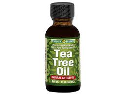 Meijer Artificial Christmas Trees by Natures Bounty Natural Tea Tree Oil 1 Oz Meijer Com