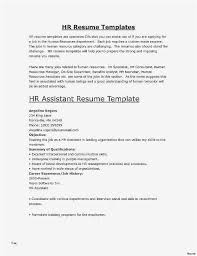 Career Summary Statement Examples Professional A Resume Luxury 0d Model