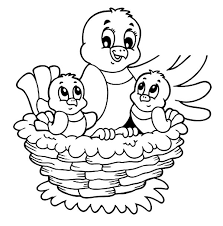 Coloring Pages For Birds Baby Bird Page Funycoloring