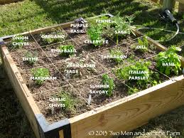 raised bed ve able garden plant spacing the garden inspirations
