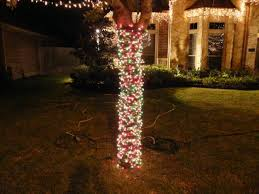Tree Trunk Christmas Lights