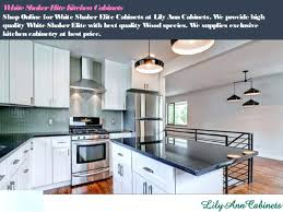 Lily Ann Cabinets Complaints by Lily Cabinets For A Traditional Spaces With Ue White And Granite