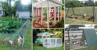 22 Low Budget DIY Backyard Chicken Coop Plans HomeDesignInspired