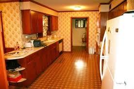 Mid Century Galley Kitchen
