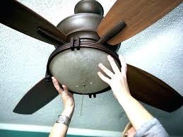 Hampton Bay Ceiling Fan Light Bulb Wattage by Ceiling Fans Light Globes Hampton Bay Ceiling Fan Replacement