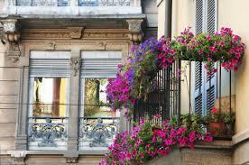 Balcony With Gorgeous Flowers