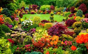 Amazing Backyard Garden With Colorful Flowers And A Wooden Park ... Small Backyard Garden Ideas Photograph Idea Amazing Landscape Design With Pergola Yard Fencing Modern Decor Beauteous 50 Awesome Backyards Decorating Of Most Landscaping On A Budget Cheap For Best 25 Large Backyard Landscaping Ideas On Pinterest 60 Patio And 2017 Creative Vegetable Afrozepcom Collection Front House Pictures 29 Deck Your Inspiration
