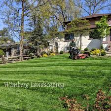 100 The Lawns Clean Lines Make A Lawn Shine With All This Rain And