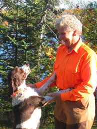 Springer Spaniel Shed Hunting by Fish River Lodge Journal It U0027s Hunting Season